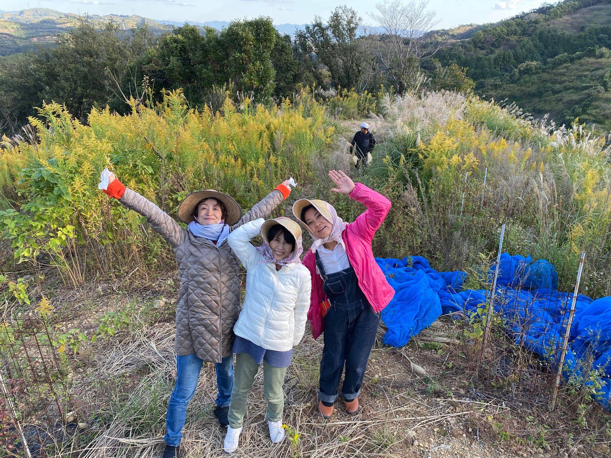 【ワーケーション体験記2020】和歌山の梅農家で、ワーケーションとSDGsの関係について考えた(江島民子)